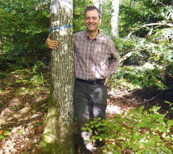 Le geai des chênes, sylviculteur d'exception