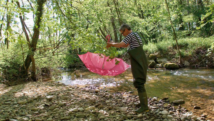 Observer la vie de la rivière au mois de mai