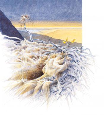 Mammouths, les colosses de la steppe
