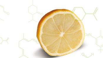 Quels molécules se cachent derrière les odeurs?