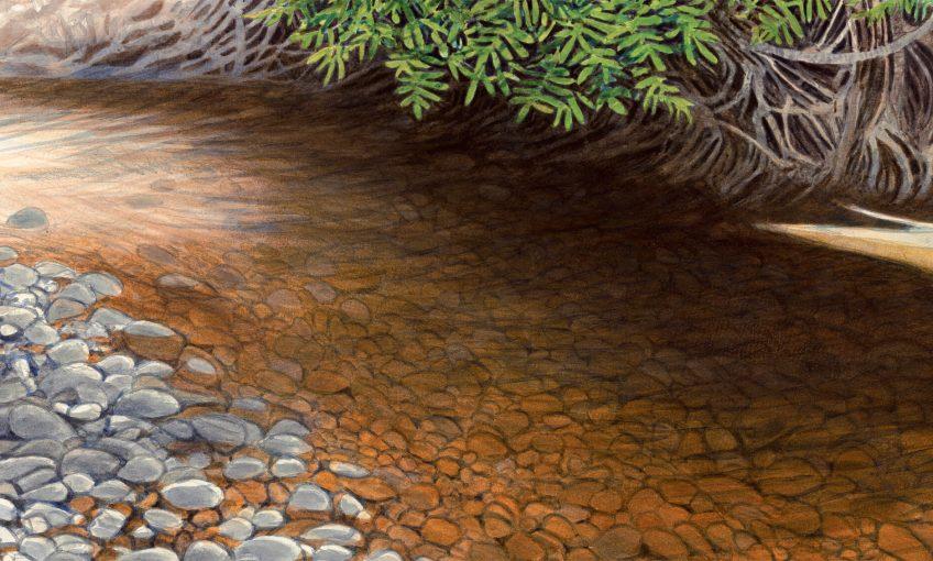 La rivière en aquarelle de Jérôme Gremaud