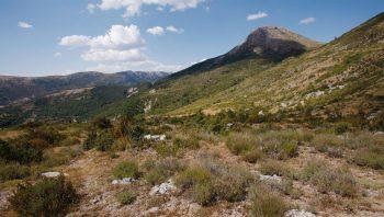 Terre caillouteuse, lavandes sèches et ciel bleu. Bienenue dans le midi de la France aux senteurs enivrantes, vers le hameau des Chauvets.