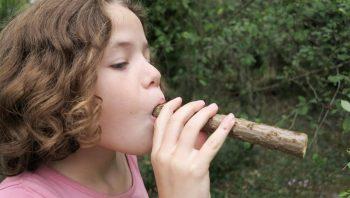 Une sarbacane 100% naturelle avec du bois de sureau