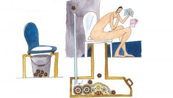 Les toilettes sèches se déclinent en plusieurs modèles.