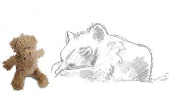 L'ours en peluche réconcilie l'homme et la bête