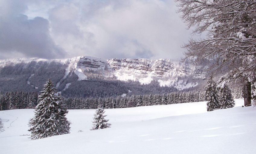 Promenade sur l'alpage du Mont d'Or