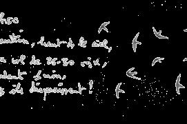 «Apparition, haut dans le ciel, d'un vol de 25-30 oisaeux, pendant une minute, puis ils disparaissent !» / © Denis Clavreul