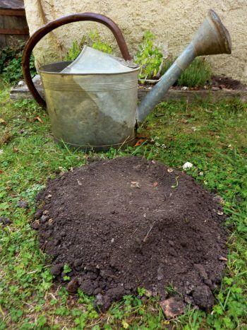semer des radis sur une taupinière