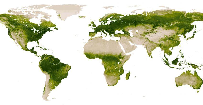 Un satellite suit la répartition de la chlorophylle sur Terre