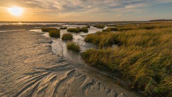 La Baie de Somme à marée basse.