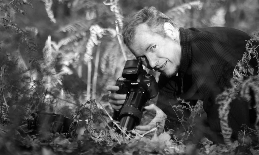 Philippe Lebeaux, un photographe fasciné par les collemboles