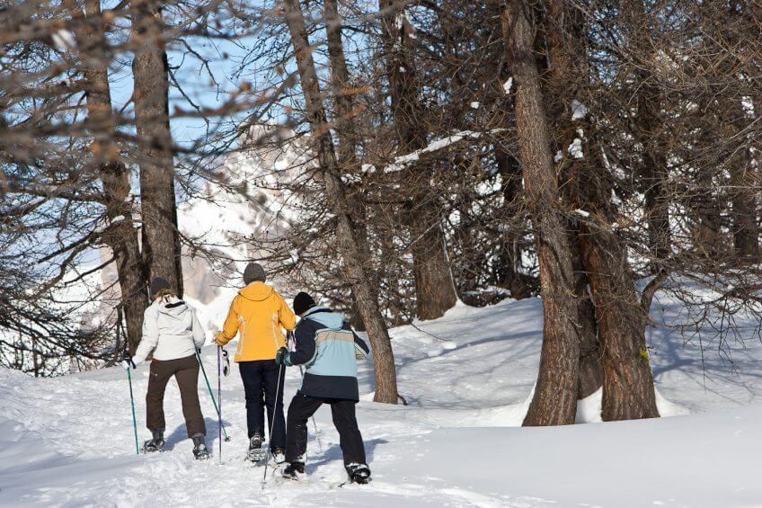 raquette balade neige forêt