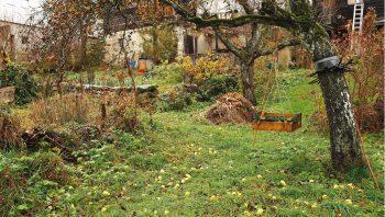 En automne, le tamis à compost…