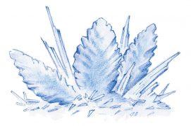 Le givre apparaît après une série de nuits froides et calmes. Il est souvent associé à une source d'humidité  (brouillard, rivière ou lac). / © Dessins Rose Gigon ( Météorisk/Le vent des cimes)