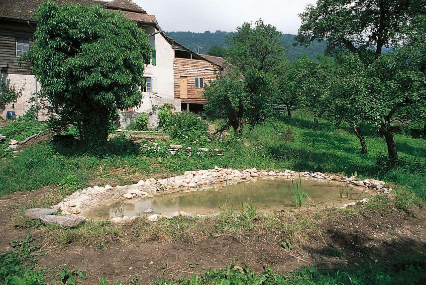 2008 mare étang mis en eau