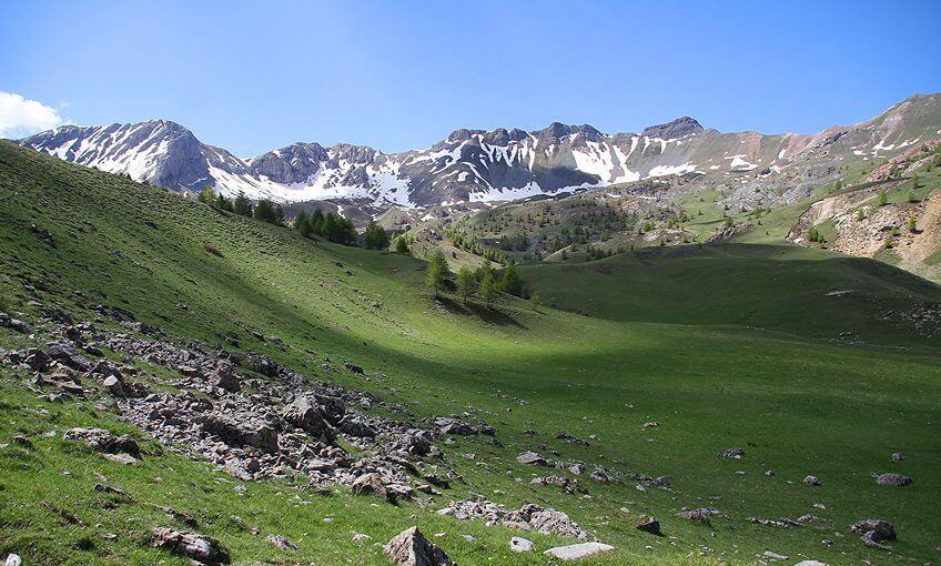 La fondation Jean-Marc Landry pour la cohabitation loup-pastoralismeHautes Alpes loup