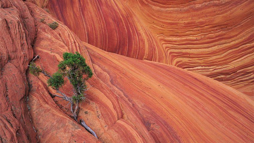 Roches en mille-feuilles rouge photo