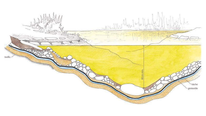 Schéma en coupe d'un étang artificiel mare dessin