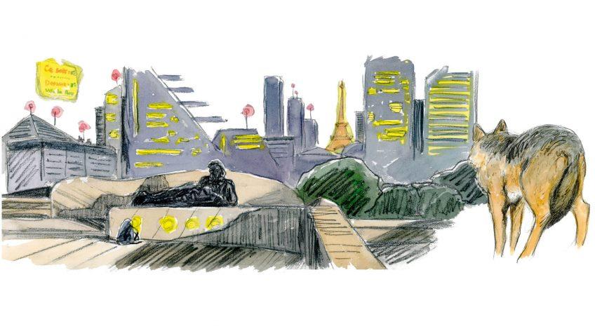 Quand un loup débarque en pleine ville de Paris - La Salamandre dessin Tsunehiko Kuwabara loup Paris
