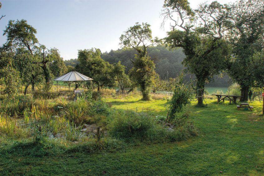 Un jardin en été