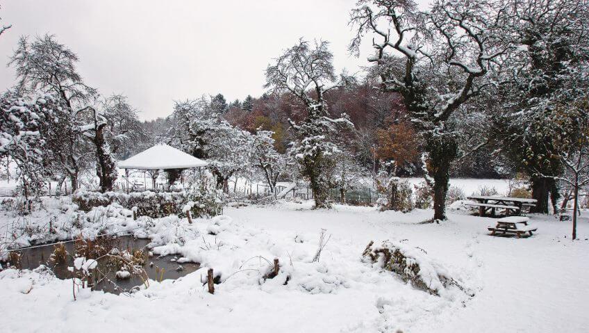 Un jardin en hiver neige