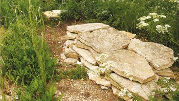 Un mur en pierres sèches procure un mélange d'ombre, d'humidité et de chaleur aux animaux du jardin.