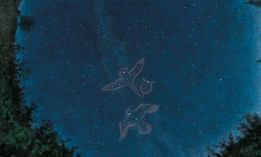 dessin nuit Deneb Cygne Altaïr Aigle Véga la Lyre étoiles