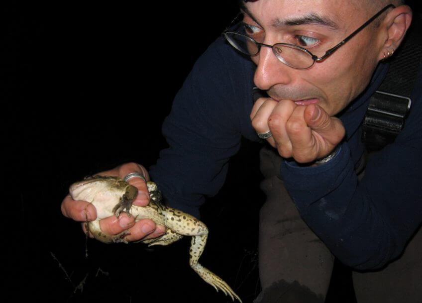 Le point sur le déclin des amphibiens avec Jean-Pierre Vacher - La Salamandre
