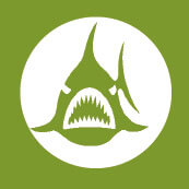 Les causes du déclin des amphibiens - La Salamandre menace amphibien icone empoissonnement