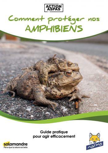 Ils se mouillent pour les grenouilles - La Salamandre Comment protéger nos amphibiens aspas livre