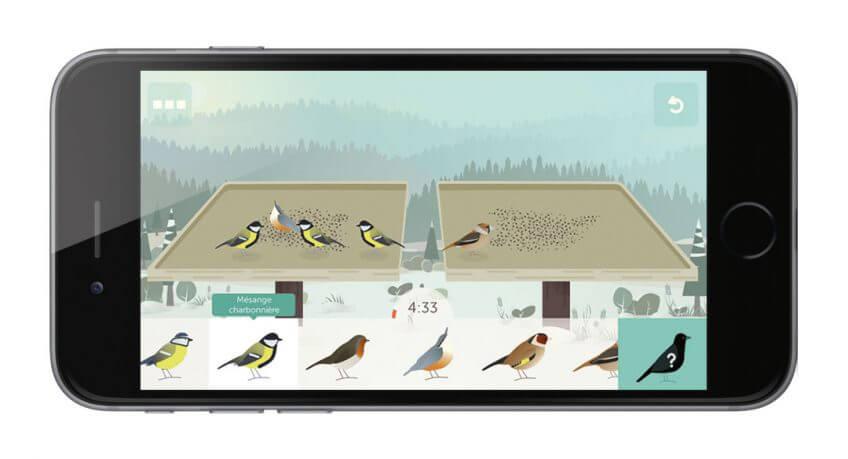 Comment nourrir merles et mésanges? - La Salamandre application BirdLab mangeoire oiseau