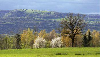 "Le site ""Natura 2000, Petite Montagne…"