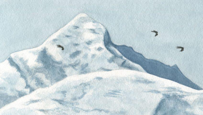 En suivant les milans noirs - La Salamandre dessin Milans noirs traversant les Alpes montagne neige vol