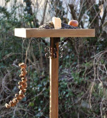 Comment nourrir merles et mésanges? - La Salamandre nourrissage oiseau mangeoire