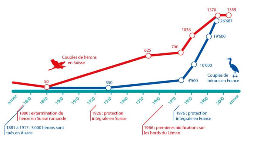 Héron: persécutions et solutions schéma évolution effectif suisse france