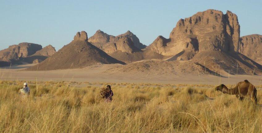 migration milan noir milou opération sahara sable désert