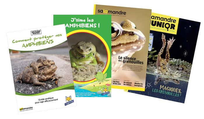 Aspas et La Salamandre pour les amphibiens