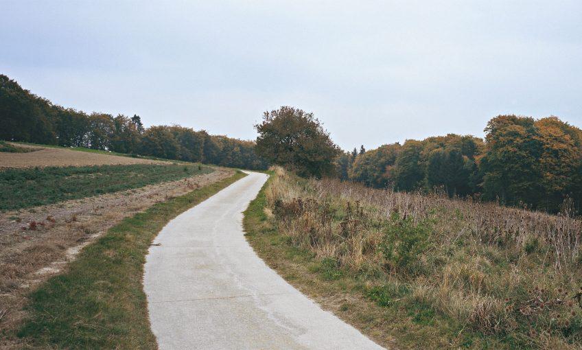 Balade d'octobre avec mille épices - La Salamandre sentier