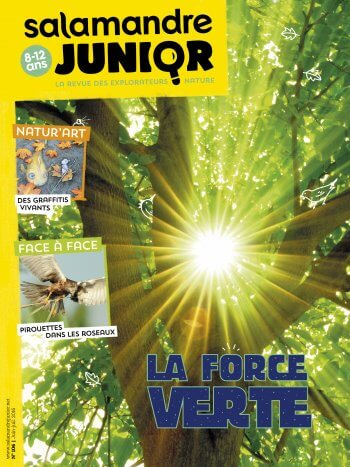 Couverture de La Salamandre Junior n°106
