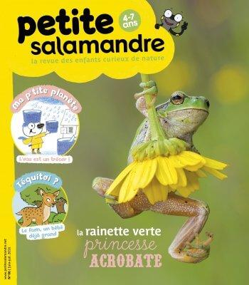 Couverture de La Petite Salamandre n°6