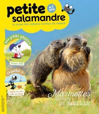 Couverture de La Petite Salamandre n°7