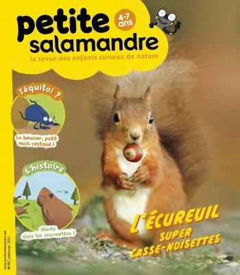 Couverture de La Petite Salamandre n°1