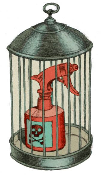 De la vie dans mes vignes - La Salamandre dessin ambroise heritier pesticide cage