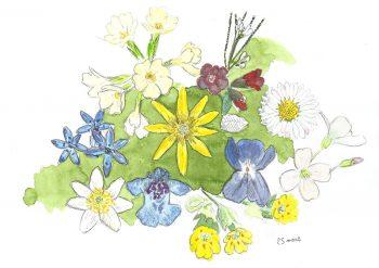 dessin-#9-bouquet-fleurs