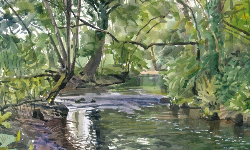 Dans ma rivière oubliée, peinture - La Salamandre