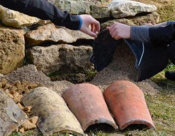 Construire une nurserie à lézards - La Salamandre seau tuile