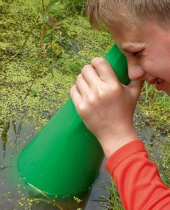 Fabriquez un aquascope - La Salamandre bricolage mare