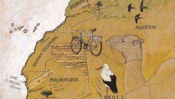Jérôme Gremaud a suivi le voyage des oiseaux migrateurs, de France jusqu'au Mali.