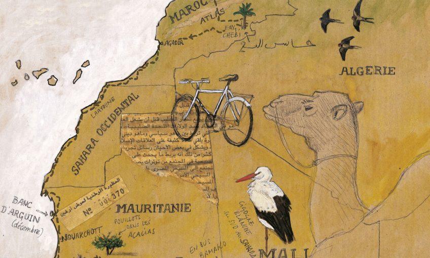 Huitième étape d'un voyage en suivant les oiseaux migrateurs - La Salamandre carte