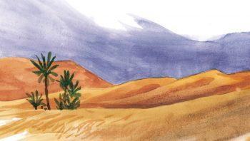 Le désert, sur des milliers de kilomètres.
